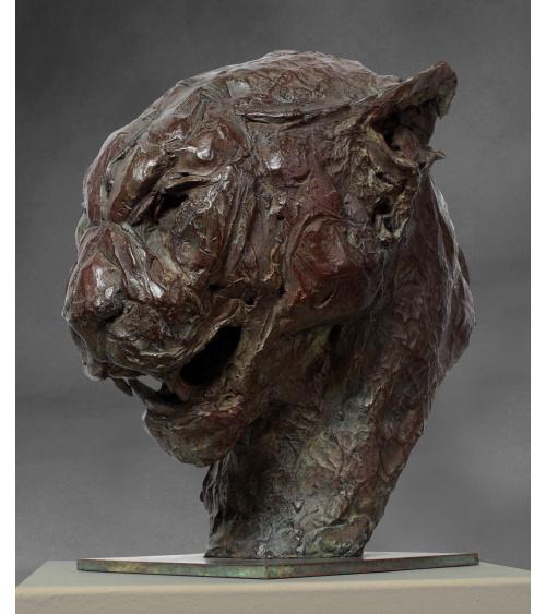 Patrick Villas - Big cat