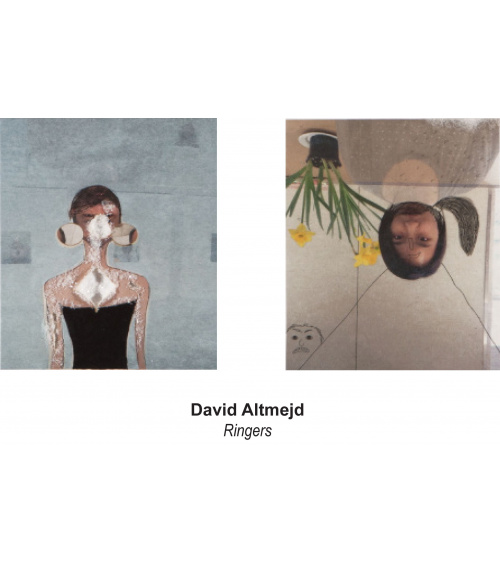 David Altmejd / Ringers - du 23/11 au 12/01/19