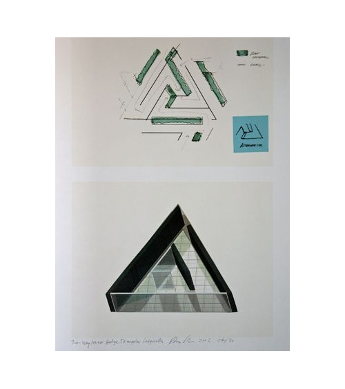 Dan Graham - Two-Way Mirror Hedge Triangular Labyrinth